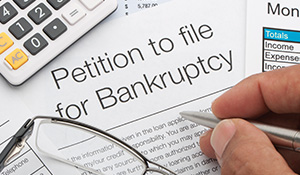 P-HP-PJ-Bankruptcy Catalog-2020-AB thumb