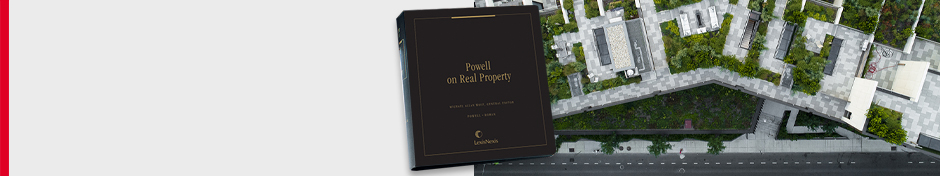 PowellOnRealProperty-2019-LW promo