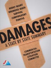 Damages, A State By State Summary cover