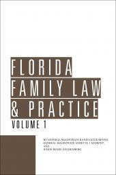 Florida Family Law & Practice cover