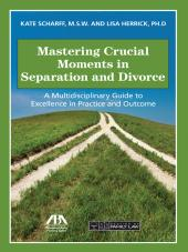 Mastering Crucial Moments in Separation and Divorce: A Multidisciplinary Guide to Excellence in Practice and Outcome cover